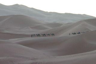 Dunes de Merzouga, départ du bivouac