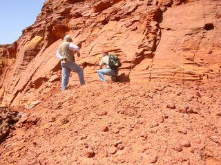 circuit fossile: Fouille sur Jurassique