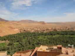 Reveillon jour de l'an: PALMERAIE de TINERGHIR