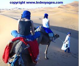 nouvel an maroc: Promenade en dromadaire