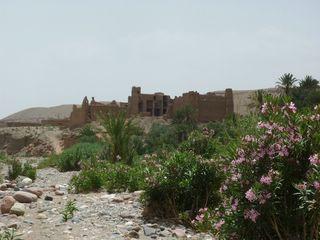 moto au maroc: Casbah près de Skoura